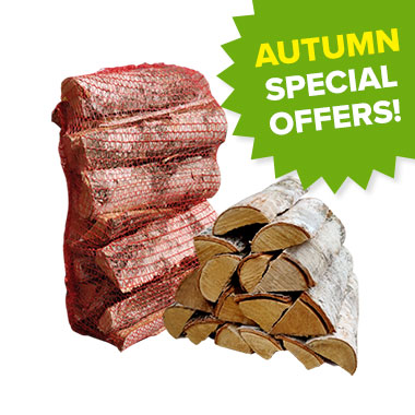 Autumn Offers - Slim Birch In Nets
